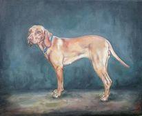 Hund, Vizsla, Malerei,