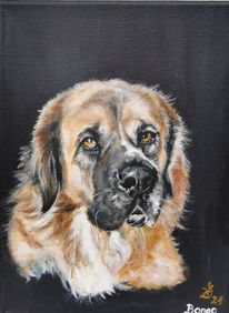 Hund, Portrait, Malerei