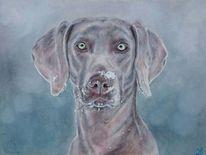 Hund, Schnee, Hundeportrait, Malerei