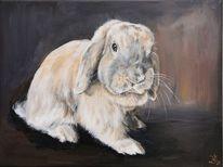Zwergwidder, Hase, Kaninchen, Malerei