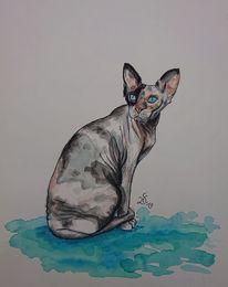 Nacktkatze, Spynx, Inktober, Katze
