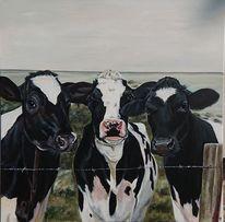 Holsteiner, Wattenmeer, Kuh, Nordsee