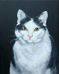 Katze, Malerei, Minute