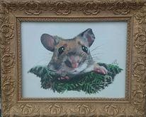 Maus, Rahmen, Portrait, Gold