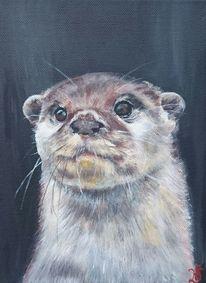 Portrait, Otter, Fischotter, Waldtier