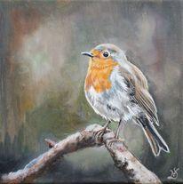 Vogel, Tiere, Rotkehlchen, Malerei