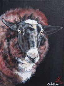 Schaf, Bauernhoftiere, Portrait, Malerei
