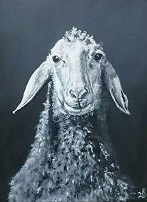 Schaf, Portrait, Schwarz weiß, Malerei