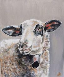 Bauernhoftiere, Wolle, Schaf, Lamm