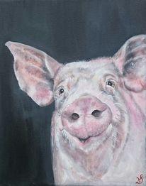 Ferkel, Tierportrait, Schwein, Eber