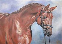 Pferde, Trakehner, Malerei, Hengst