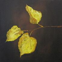 Ambiente, Blätter, Wald, Herbst