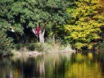 Blickwinkel, See, Ufer, Wasser
