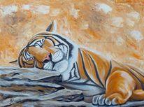 Tiere, Bär, Realismus, Tiger