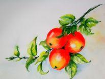 Gelb, Ernte, Apfel, Grün