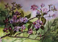 Blüte, Regen, Mudau, Künstler artist