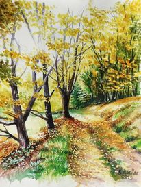 Bunt bäume, Aquarellmalerei, Natur, Landschaft