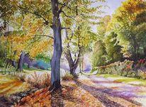 Ernsttal, Baum, Sonne licht, Odenwald
