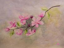 Zweig, Blumen, Frühjahr, Baum
