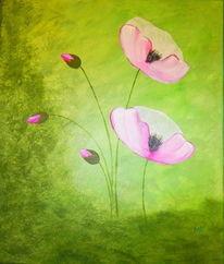 Blumen, Mohnrosa, Knospe, Filigran