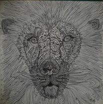 Schwarz weiß, Löwe, Zeichnungen