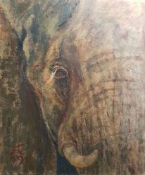 Elefant, Ocker, Blut, Augen