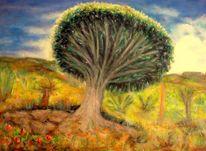 Natur, Hitze, Baum, Drachenbaum