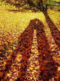 Körper, Herbst, Schattenspiel, Schatten