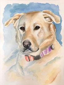 Tiere, Aquarellmalerei, Hund, Gemälde