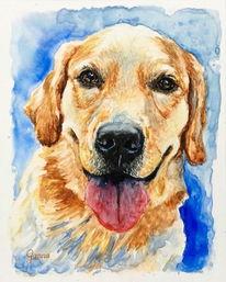 Hund, Aquarellmalerei, Tiere, Retriever