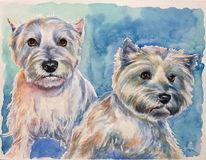 Gemälde, Aquarellmalerei, Blau, Terrier