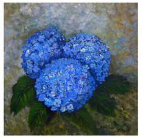 Hortensien, Blüte, Blätter, Blau