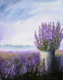 Blumentopf, Lavendelfeld, Lila, Duft