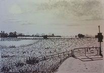 Landschaft, Weserwehr, Feld, Weiden