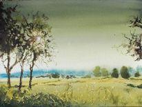 Sonne, Gegenlicht, Landschaft, Baum