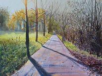 Straße, Schattenspiel, Baum, Landschaft