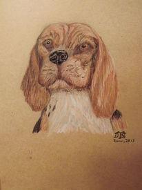 Hund, Neo, Beagle, Zeichnungen