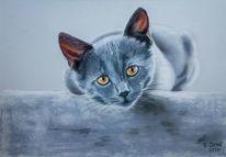 Pastellmalerei, Katze, Tiere, Haustier