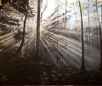 Mystik, Licht, Baum, Wald