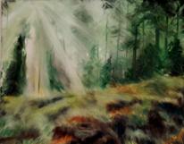 Wald, Baum, Lichtung, Lichtstrahlen