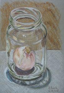Zwiebeln, Einmachglas, Glas, Zeichnungen