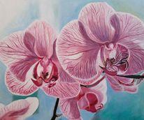 Pastellmalerei, Blumen, Orchidee, Magenta