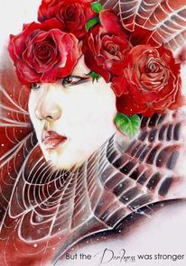 Rose, Zeichnungen