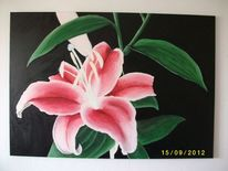 Blumen, Lilie, Pflanzen, Acrylmalerei