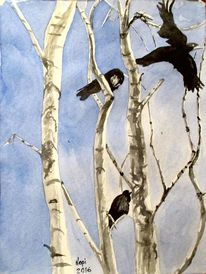 Amsel, Birken, Winter, Aquarellmalerei