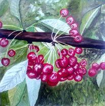 Früchte, Kirsche, Wärme, Malerei