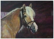 Licht, Pferde, Schatten portrait, Malerei