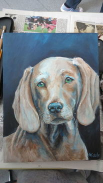Acrylmalerei, Hundeportrait, Hund, Naturgetreu