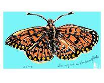 Schmetterling, Sumpfwiesen, Perlmutfalter, 2013