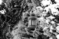 Winter, Laterne, Schwarz weiß, Schnee